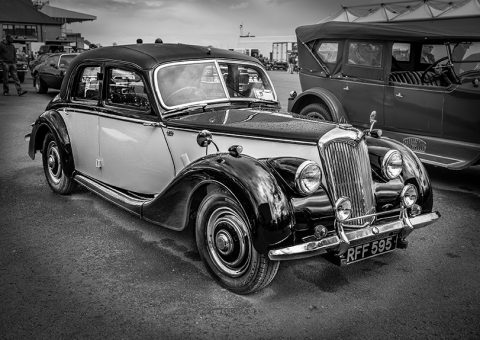Riley, Punchestown Show