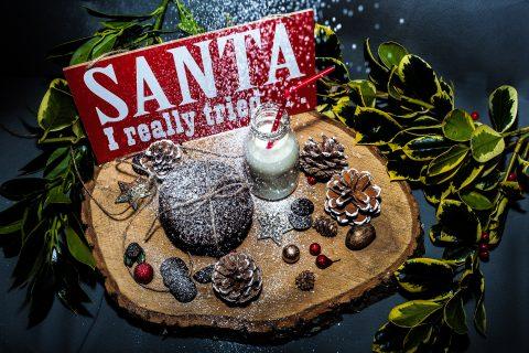Santa I Really Tried