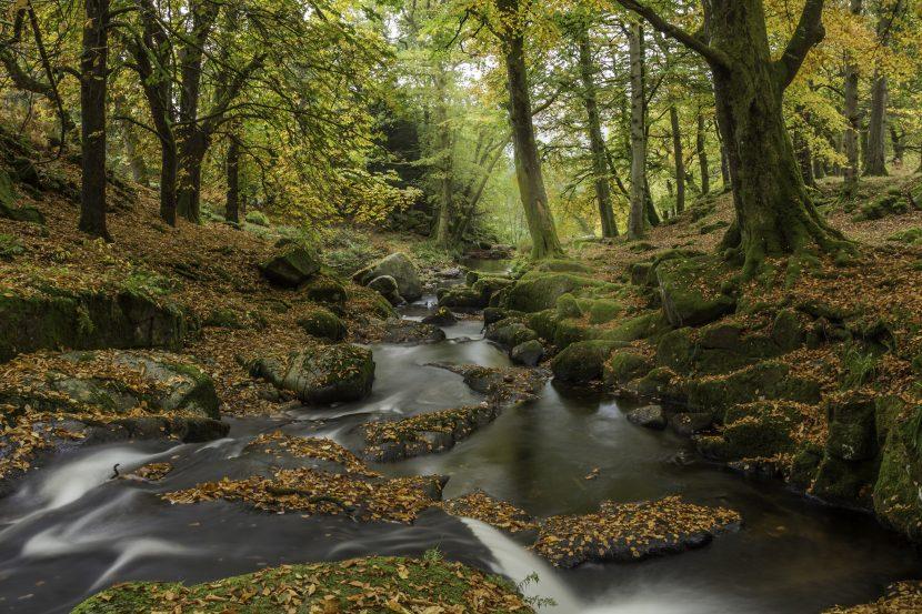 Cloughlea downstream