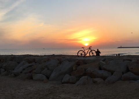 Sunset Cyclist