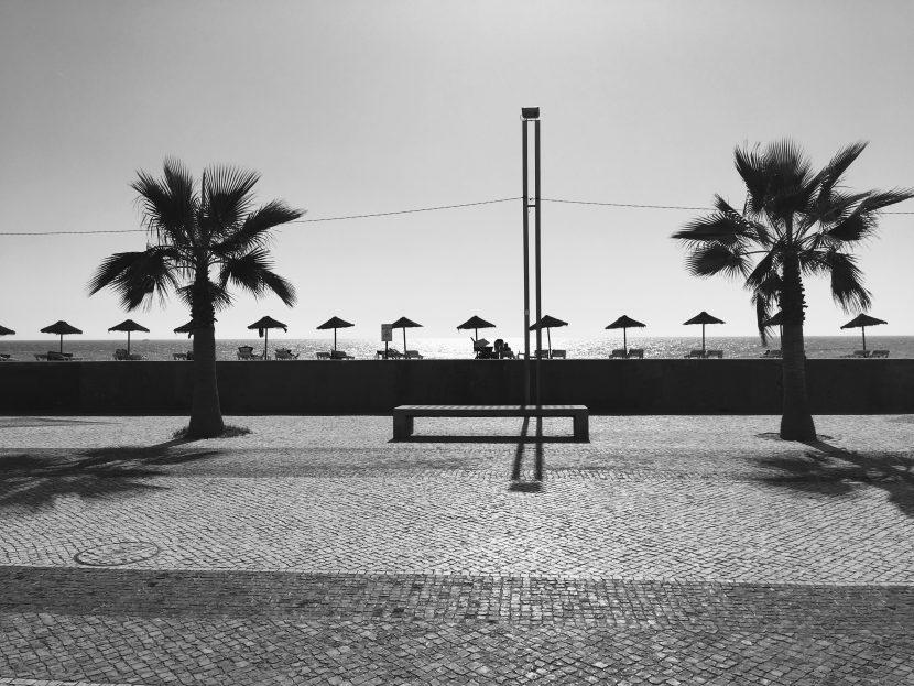 The palm beach