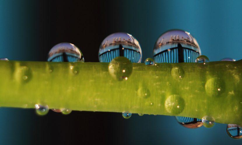 A world inside a droplet