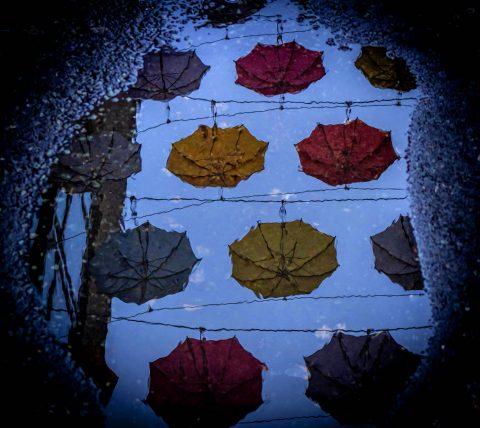 Umbrellas Preferred