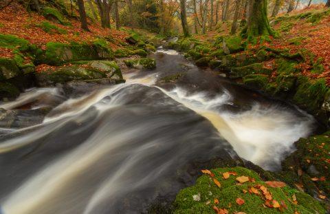 Cloughleagh Downstream